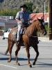 Davis Horse Ranch 173