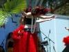 2010 Hawaiian Festival 65