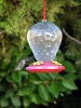 7.31.2010 Hummingbirds 26