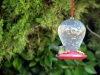 7.31.2010 Hummingbirds 27