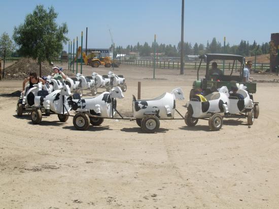 Fun Rides 15