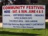 Community Festival 01