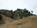 Hills 16