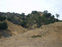 Hills 17