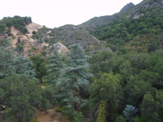 Hills 21