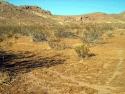 Rosamond Desert 01