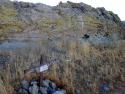 Rosamond Desert 04