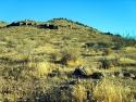 Rosamond Desert 05
