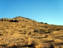Rosamond Desert 06