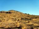 Rosamond Desert 06