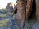 Rosamond Desert 11