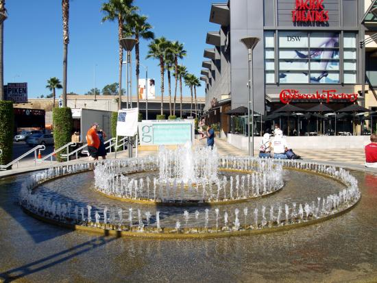 Fountain Palms