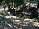 Malibu Creek  2