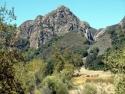 Side Tree Hill