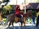 Beauty Rides A Horse  2