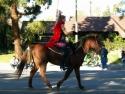 Beauty Rides A Horse  3