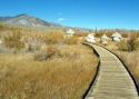 Boardwalk Tufa 