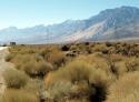 Brush Mountains