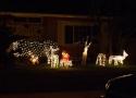 Christmas 2007 s 16