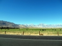 Cows Mountains