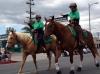 Volinter Mounted Patrol  6