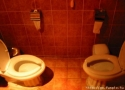 Everybodys Toilet