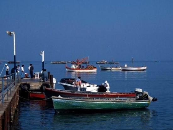 Fishing Boats 17