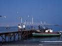Fishing Boats 11