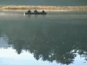 Fishing Boats 13
