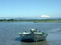 Fishing Boats 15