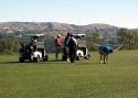 Golfer  07