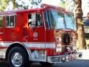 LAFD Engine 296  3