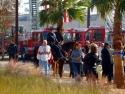 LAPD Mounted Patrol 1