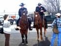 LAPD  Mounted Patrol 4