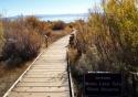 Mono Lake Tufa State Reserve