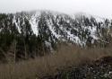 Mt Rose Hwy
