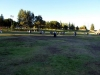 Northridge Park  02