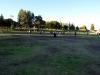 Northridge Park  02
