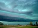 Oklahoma Wether 16