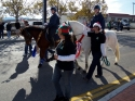 Ride On Therapeutic Horsemanship  1