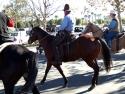 Chatsworth-e Riders  3