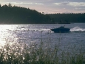 Recreational Boats 15