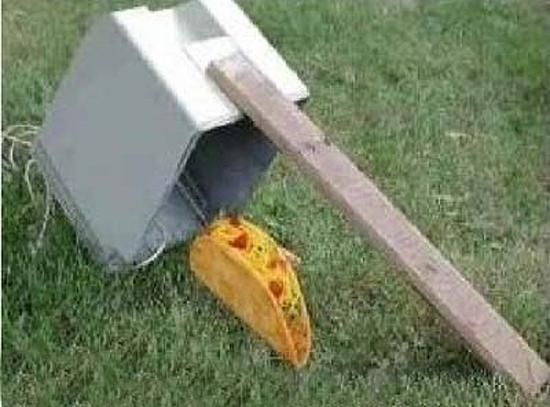 Redneck Border Security Solution