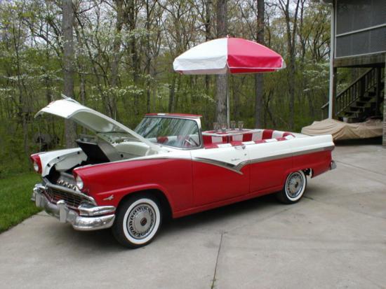 Redneck Car Grill Shot 1