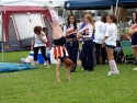 Relay For Life  120