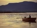 Row Boats 14