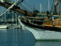 Sail Boats 112