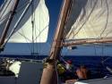 Sail Boats 115