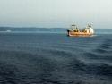 Sail Boats 118