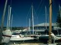 Sail Boats 119